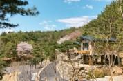 철원 두루웰 숲속문화촌 성황, 에코오드벤처 이용자 70% 늘어