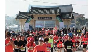 철원DMZ국제평화마라톤대회 성황리 개최