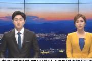 철원 멧돼지 폐사체서 ASF 바이러스 또 검출